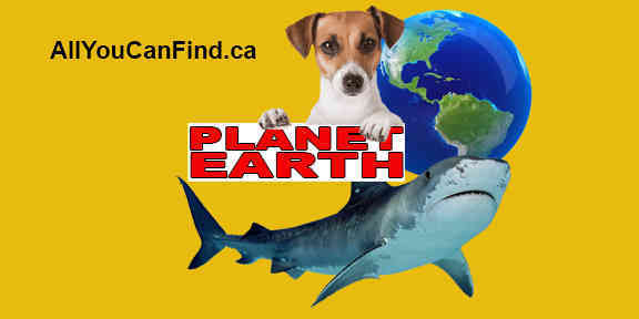 Get your Planet Earth news today, ecology, animals, Natural disasters, and much more! …Updated hourly! On AllYouCanFind.ca!